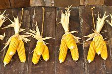 Free The Harvest Corns Stock Photography - 29267312