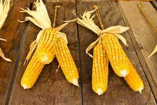 Free The Harvest Corns Royalty Free Stock Photos - 29267368