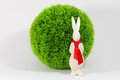 Free Easter Bunny Before A Bush Royalty Free Stock Images - 29279039