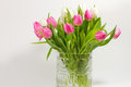 Free Tulips In Crystal Vase Royalty Free Stock Image - 29279176