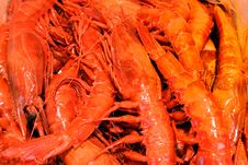 Free Prawns Stock Photos - 29271083