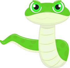 Funny Snake Royalty Free Stock Photo