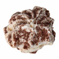 Free Custard Cake Stock Images - 29291264