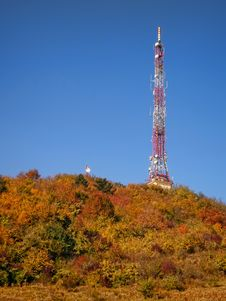 Free Antenna In Autumn Forest Stock Photos - 29295643