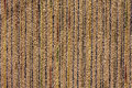 Free Tweed Fabric Pattern Backgroun Royalty Free Stock Images - 2936219
