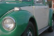 Green And Grey Bug Stock Image
