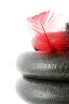 Dumbbell And Feather On White Stock Image