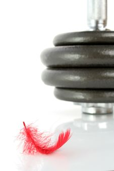 Dumbbell And Feather Isolated Royalty Free Stock Photo