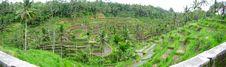 Free Landscape Stock Photo - 2931520