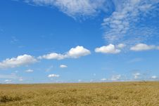 Free Landscape Under Blue Sky Royalty Free Stock Photography - 2932817