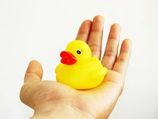 Free Rubber Ducky In Hand 2 Stock Photo - 2933680