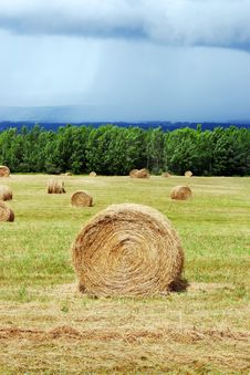 Free Hay Bales Stock Photos - 2933893