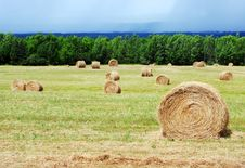 Free Hay Bales Stock Photography - 2933902