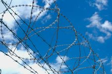 Free Barbed Stock Photo - 2934770