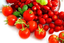 Free Red Tomatoes Stock Images - 2937134