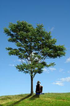 Free Woman And Tree Stock Photos - 2937453