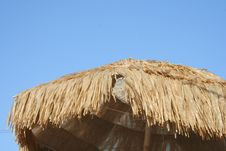Free Thatched Roof Stock Photography - 2938522