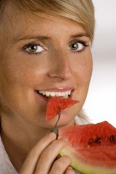 Free Melon Royalty Free Stock Photos - 2939368