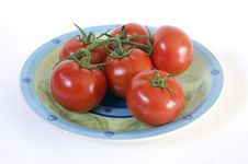 Free Tomatoes On The Vine Stock Photography - 29304862