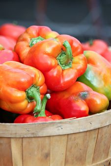 Basket Of Red Peppers Royalty Free Stock Photo