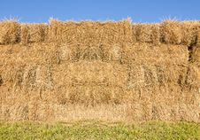 Free Field With Bales Of Hay Stock Images - 29325264