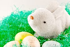 Free Easter Bunny And Eggs Stock Photos - 29328003