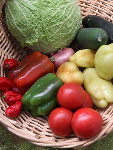 Free Fresh Vegetable Royalty Free Stock Photos - 29329698