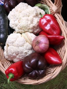 Free Fresh Summertime Vegetable Royalty Free Stock Image - 29329726