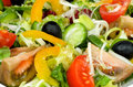 Free Background Of Vegetable Salad Royalty Free Stock Images - 29334849
