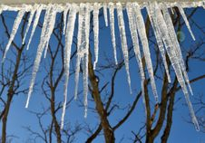 Free Icicles Stock Photo - 29331580