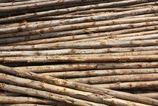 Free Eucalyptuses Wood Stack Stock Photography - 29338632