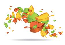 Colourful Leaves Swirling Stock Photography