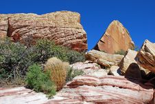 Aztec Sand Stone Rock Formation  And Desert Vegetation Near Red Rock Canyon, Southern Nevada Royalty Free Stock Image