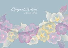 Free Floral Template Greeting Card With Pastel Flowers Stock Image - 29354541