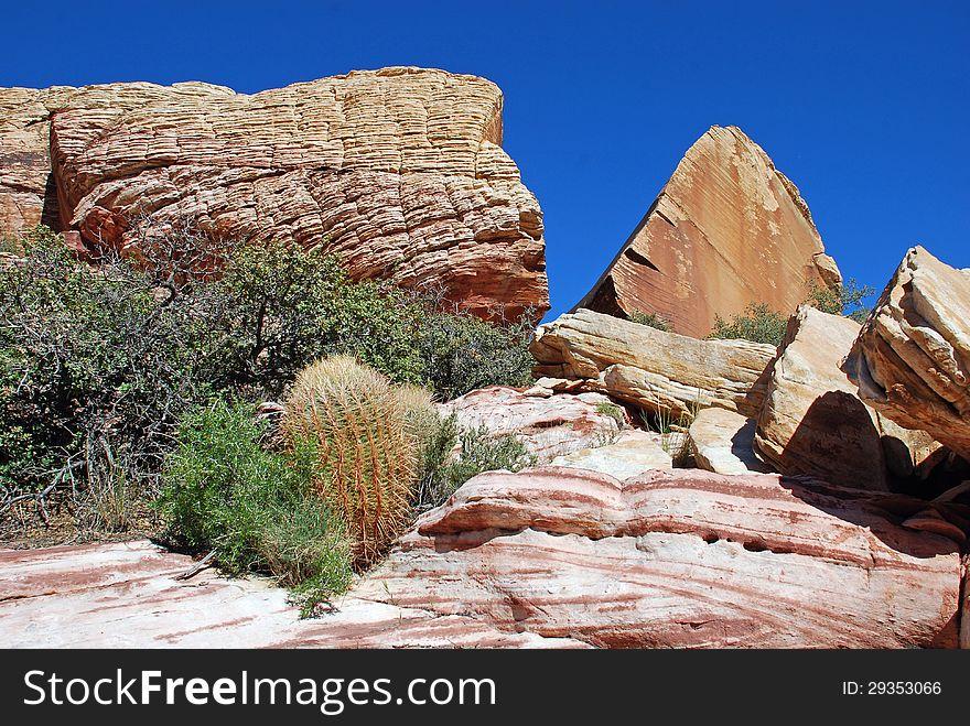 Aztec Sand Stone Rock Formation And Desert Vegetation Near