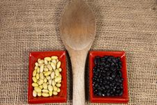 Free Myocoba Bean And Black Bean With A Wooden Spoon In Japanese Serving Dishes. Stock Image - 29372141