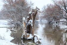 Free Winter Landscape River Zagyva Royalty Free Stock Photo - 29372205