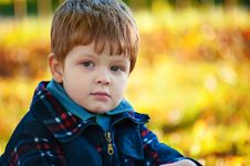 Free Handsome Boy, Autumn Portrait Royalty Free Stock Image - 29372406