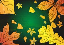 Free Abstract Autumn Background. Stock Photo - 29379390