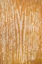Free Wooden Texture Stock Photos - 29382613
