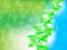 Free Green Leaf Butterflies Background Stock Photo - 29386820