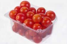 Free Tomatoes Royalty Free Stock Photo - 29389615