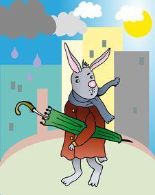 Free Rabbit Witn Umbrella Royalty Free Stock Images - 29394989