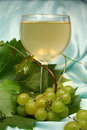 Free Glass White Wine On Blue Backg Stock Photo - 2947250
