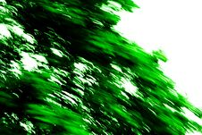 Free Green Texture 141 Royalty Free Stock Photos - 2943408