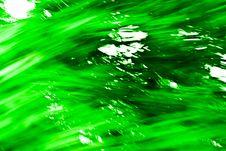 Free Green Texture 143 Royalty Free Stock Photos - 2943418