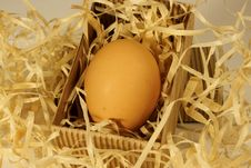 Free Egg In A Box Stock Photos - 2943503