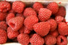 Free Raspberries Stock Image - 2943591