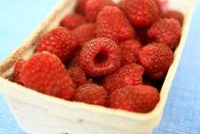 Free Raspberries Stock Photos - 2943603