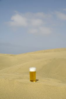 Free Fresh Beer In Desert Stock Image - 2946701
